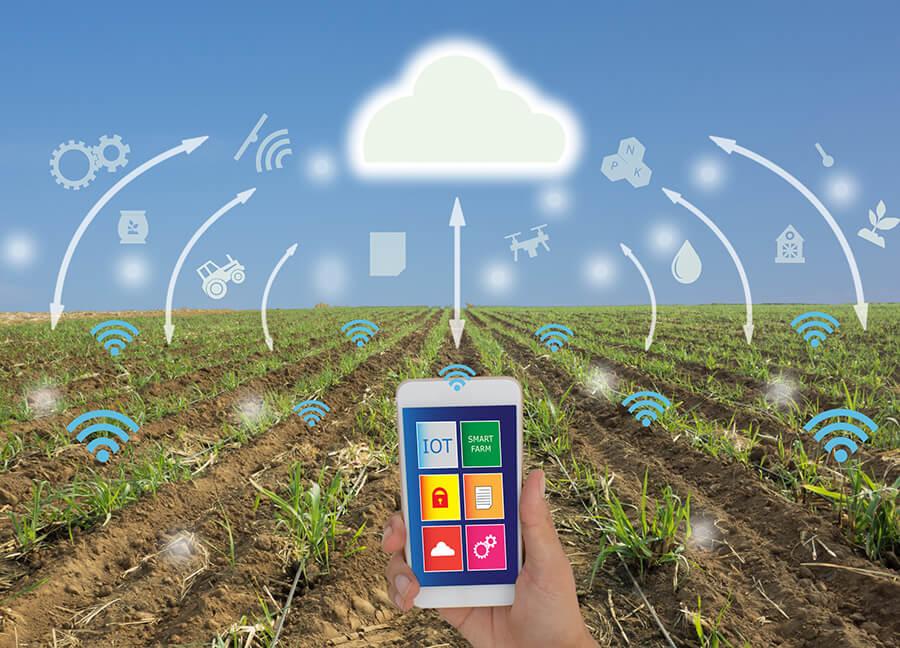 Big Techs Avançam Também Sobre a Agricultura Digital – por Roberto Moraes